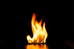 Burning fire flame on black background Royalty Free Stock Photo