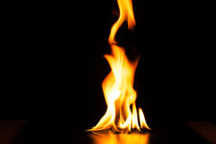 Burning fire flame on black background.  Royalty Free Stock Photography