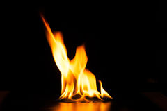 Burning fire flame on black background Stock Photos