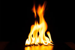 Burning fire flame on black background Stock Images