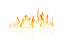 Burning fire flame. With reflection on white background Royalty Free Stock Photos