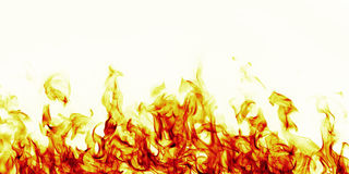 Burning fire flame on white background Royalty Free Stock Image