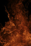 Burning fire flames detail Royalty Free Stock Images