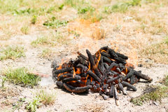 Burning fire in flames and embers preparing for barbecue on the grass land.  Stock Photo