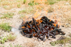 Burning fire in flames and embers preparing for barbecue on the grass land.  Stock Photos