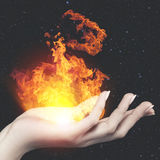 Burning fire of the Knowledge Stock Image