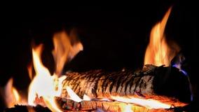 Burning fire Stock Photo