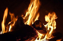 Burning fire logs Royalty Free Stock Photos