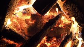 Burning Fire in natural fireplace in SLOW MOTION HD VIDEO. Branches of conifer tree burns in flames