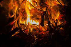 Burning Fire. Raging bonfire at night Royalty Free Stock Image