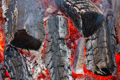 Burning fire wood Royalty Free Stock Images
