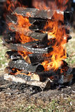 Burning fire wood Royalty Free Stock Photo