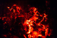 Burning fire wood Stock Image