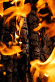 Burning fire wood on a black Royalty Free Stock Images