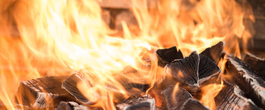 Burning fire wood. The fire on the wood, charred wood, ash Royalty Free Stock Photos
