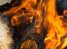 Burning fire wood. And ember Royalty Free Stock Photos
