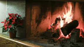 Burning fireplace closeup with flower decoration Stock Photo