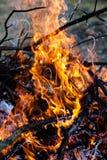 Burning fireplace Stock Photos