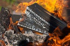 Burning firewood Stock Image