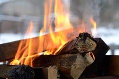 Burning firewood Royalty Free Stock Image
