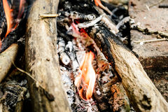 Burning firewood. bonfire. fire, ashes. Stock Photos