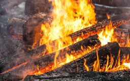 Burning firewood in bonfire with metal kettle Stock Photography