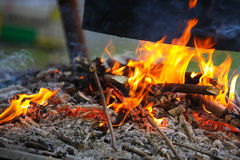 Burning firewood at campfire. Royalty Free Stock Images
