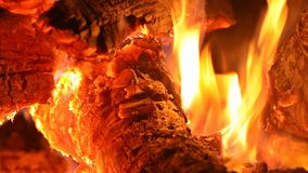 Close up bonfire flames of camping fire burning firewood. Burning firewood. close up bonfire flames of camping fire stock footage