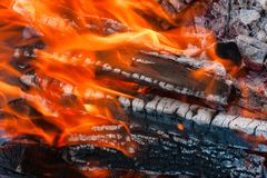 Burning firewood Stock Photography