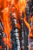 Burning firewood Royalty Free Stock Photography