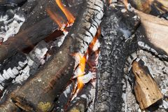 Burning firewood in fire stock photography