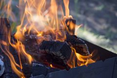 Burning firewood in fire flame in brazier. Outdoor recreation concept. Firewood coals in ashes in fire flame in barbecue brazier. Outdoor recreation concept stock photography