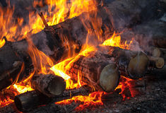 Burning firewood on fireplace Royalty Free Stock Photography
