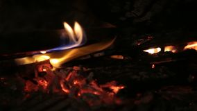 Burning firewood in the fireplace. stock video