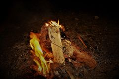 Burning wood in the woods stock images