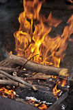 Burning firewood on grill Stock Image