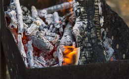 Burning firewood in the grill, coals, fire Stock Photos