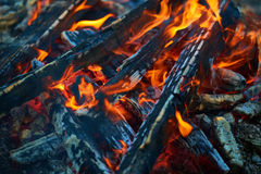 Burning firewood in the grill Stock Photo