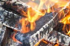 The burning firewood Stock Photography