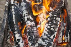 The burning firewood Royalty Free Stock Images