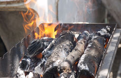 The burning firewood Stock Images