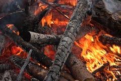 Burning firewoods Stock Image