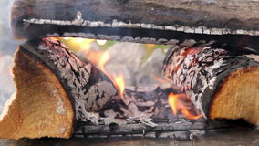 Burning firewoods closeup stock video
