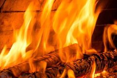 Burning firewoods Royalty Free Stock Image