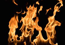 Burning flame Stock Images