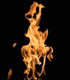 Burning flame. On black background Royalty Free Stock Photography