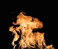 Burning flame Royalty Free Stock Photos