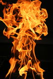 Burning flame detail. On black background Stock Photo