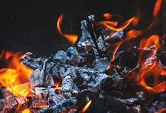 Burning flame and firewoods Stock Images