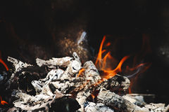 Burning flame and firewoods Stock Image